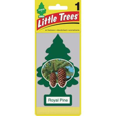 Little Trees Car Air Freshener, Royal Pine